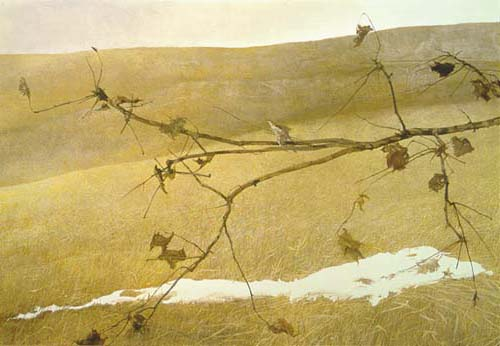 Long Limb, by Andrew Wyeth (1999)
